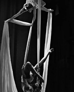 Silk Aerial Performer for Events New York