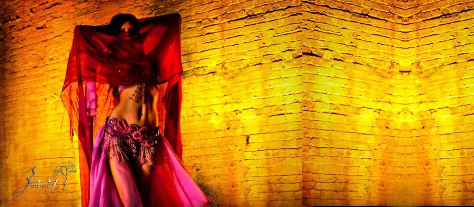 Tati-Ent-Home-Banner-belly-dancer