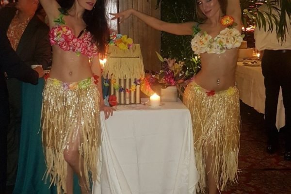 Themed Private Party Event Dancing Performers New York City
